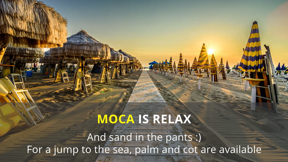 MOCA 2016 other services